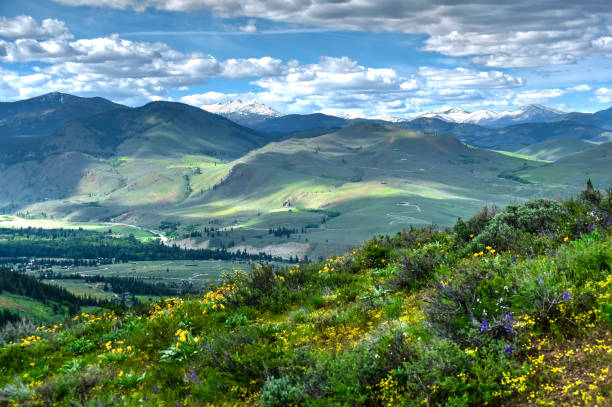 Rolling hills from Patterson Mountain. stock photo