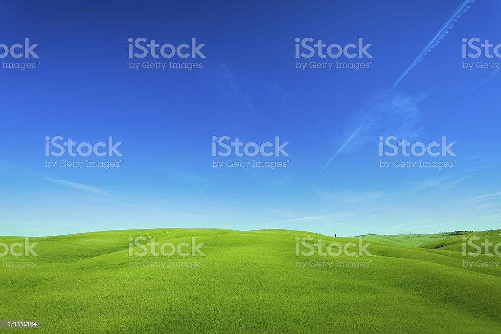 Rolling Hills Landscape in Tuscany, Val d'Orcia, Italy stock photo