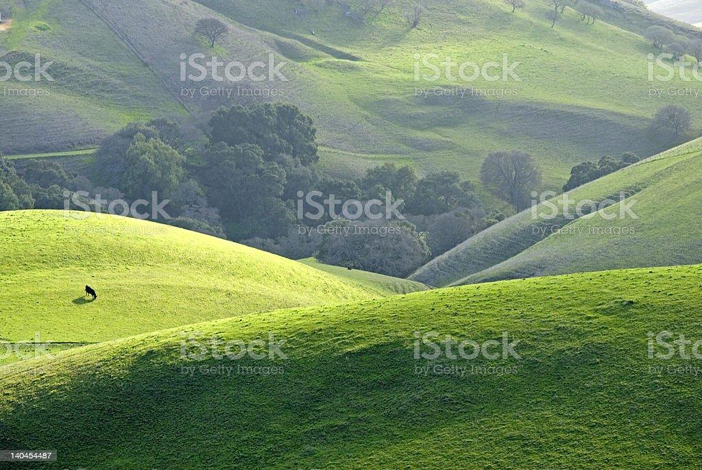 rolling hills near mount diablo royalty-free stock photo