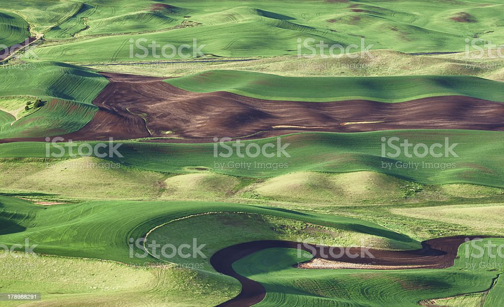 Rolling Hills of the Palouse royalty-free stock photo