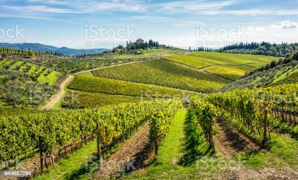 Rolling hills of tuscan vineyards in the chianti wine region picture id944687294?b=1&k=6&m=944687294&s=612x612&h= isvdp42d0jcxstdfbogk2gbjlto9rjv7mknujc05jo=