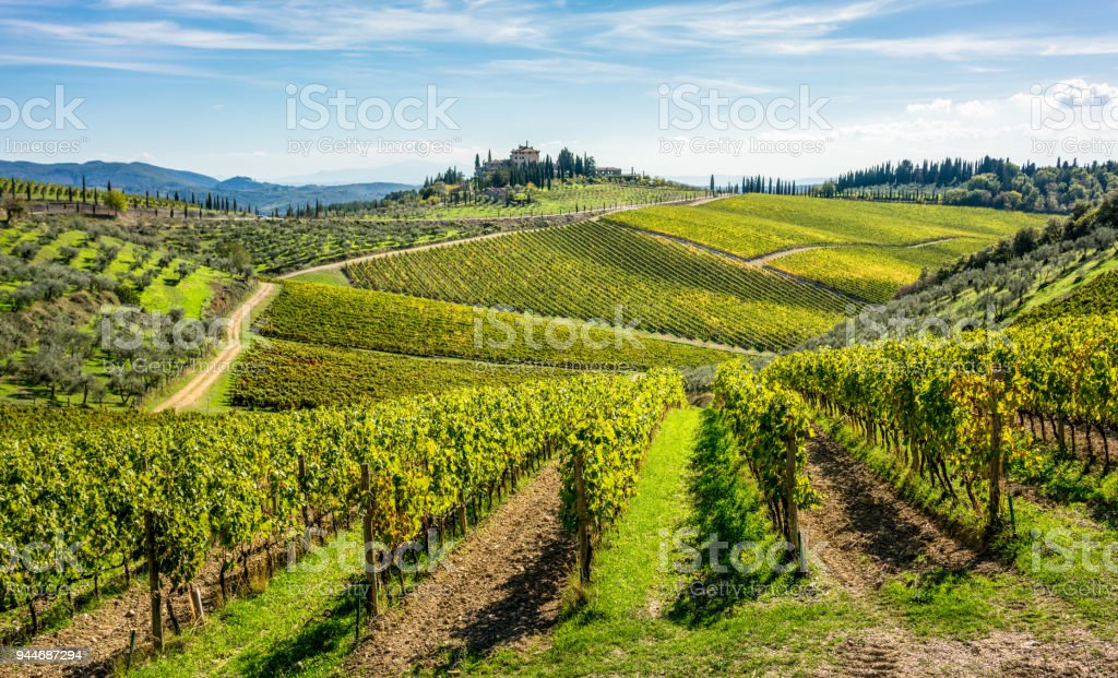 Rolling hills of Tuscan vineyards in the Chianti wine region stock photo