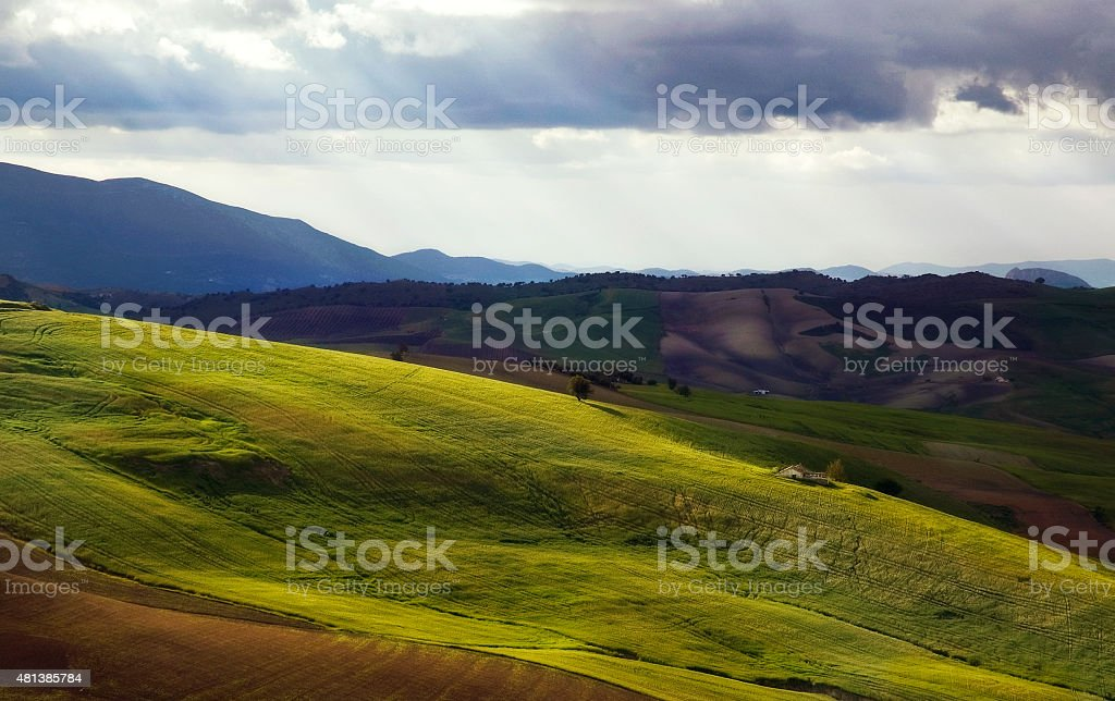 Rolling hills with cornfields, Sierra de las Cumbres, Andalusia, Spain stock photo