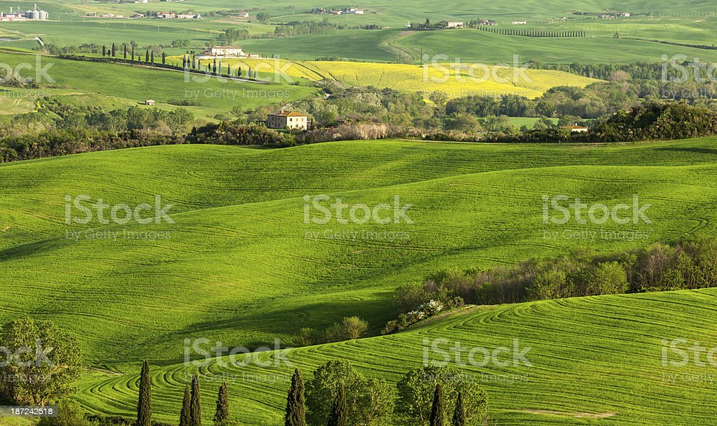 Rolling Landscape in Tuscany, Italy royalty-free stock photo