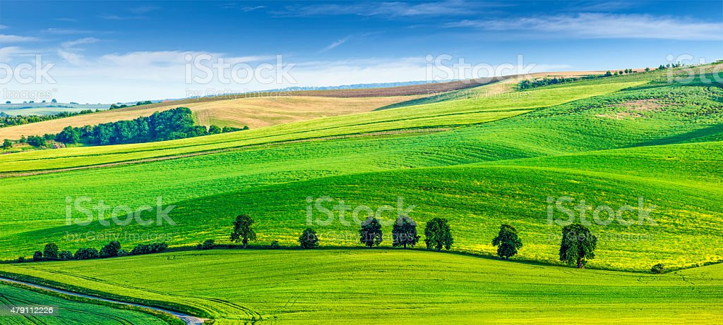Rolling landscape of South Moravia with trees stock photo