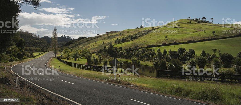 Rolling Landscape (NZ) stock photo