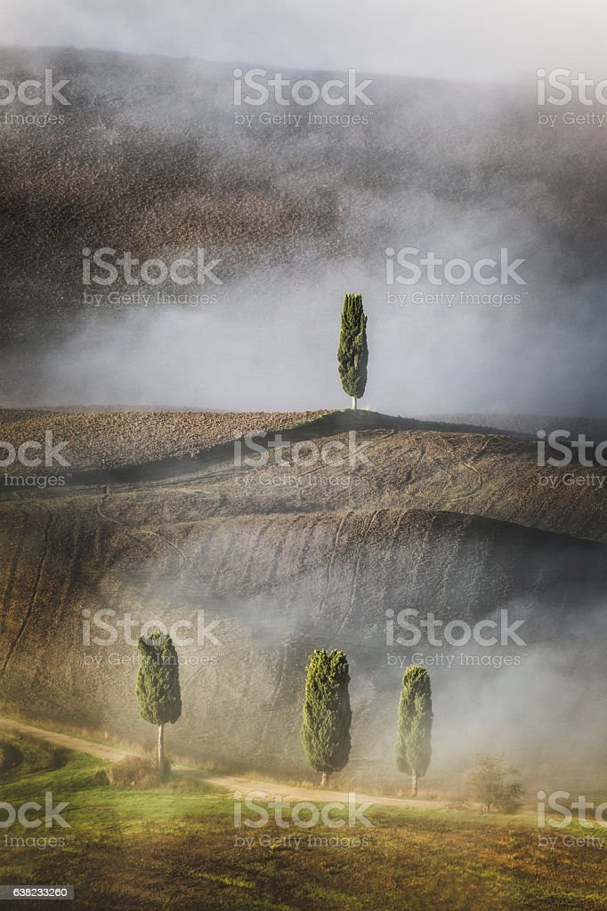 Rolling Landscape with Cypress Trees, Tuscany, Italy stock photo