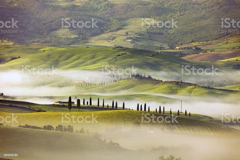 Rolling Landscape with Morning Fog, Tuscany, Italy royalty-free stock photo