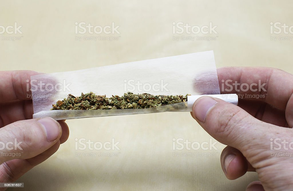 Rolling marijuana joint stock photo