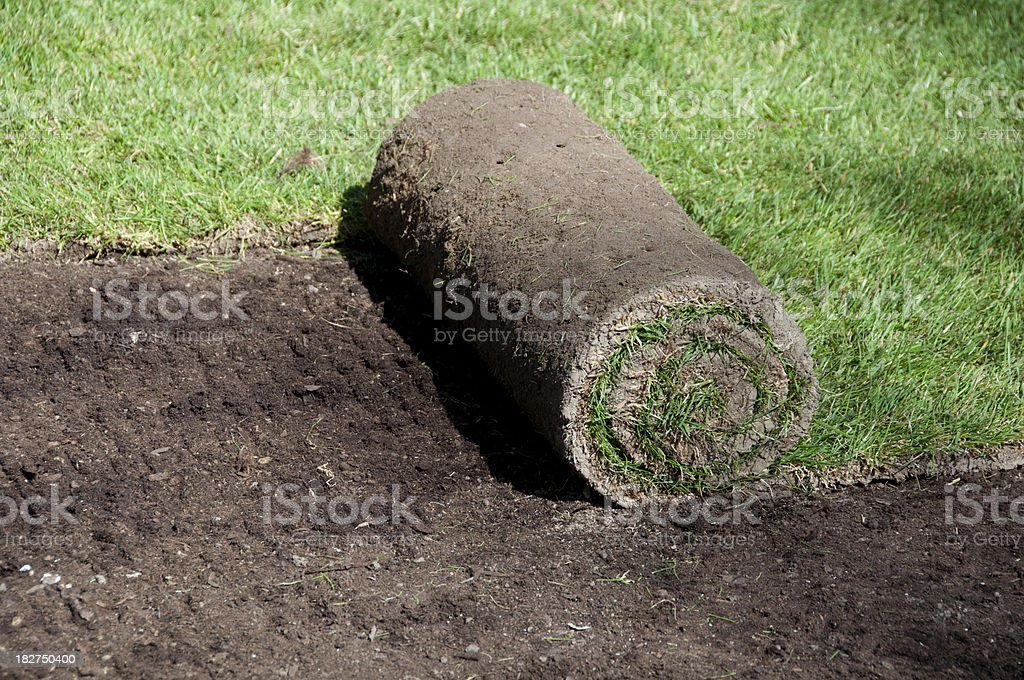 Rolling out new turf and making new lawn with grass royalty-free stock photo