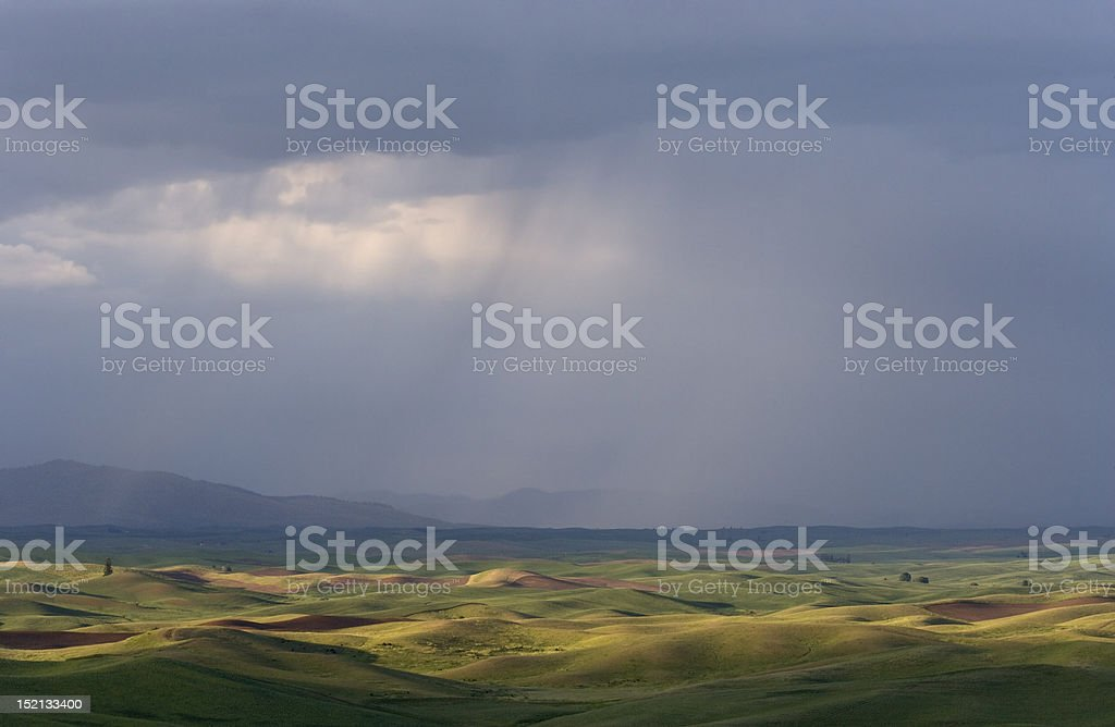 Rolling Palouse Fields in Stormy Weather stock photo