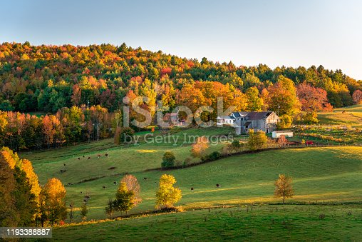 istock Rolling rural landscape at sunset. Stunning autumn colours. 1193388887