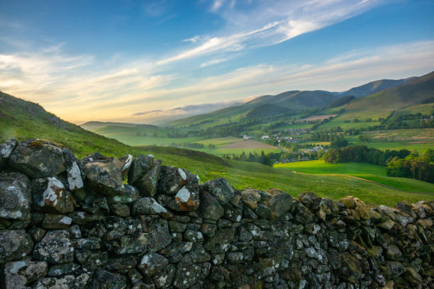 rolling scottish countryside - rural scene stock pictures, royalty-free photos & images