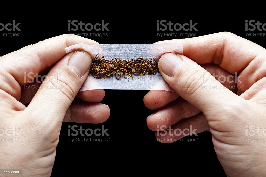 Rolling Tobacco royalty-free stock photo