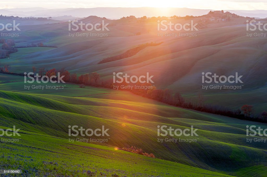 Rolling Tuscany Landscape At Evening Sunlight,Val D'orcia, Italy stock photo