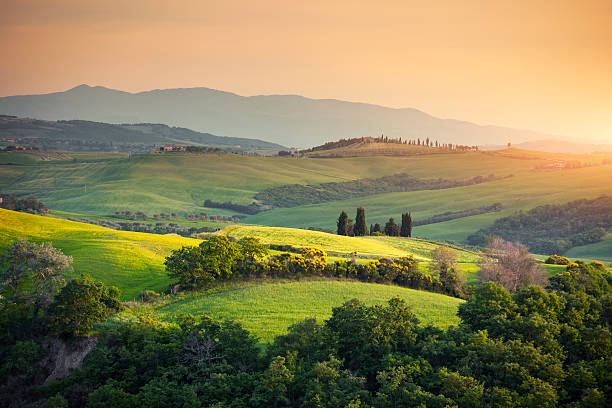 Rolling Tuscany Landscape Rolling Tuscany landscape at sunset (Val D'orcia, Italy). hill stock pictures, royalty-free photos & images