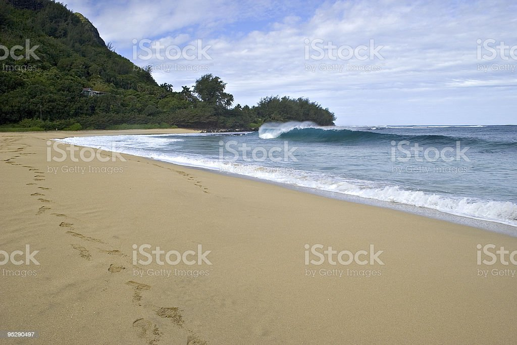 Rolling Wave Breaking Onto A Sandy Beach - Kauai, Hawaii stock photo