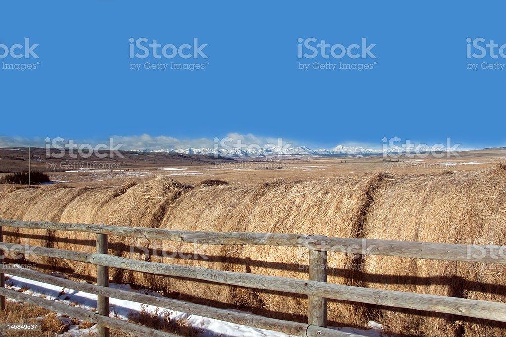 Rolls of hay near Cochrane, Alberta, Canada stock photo