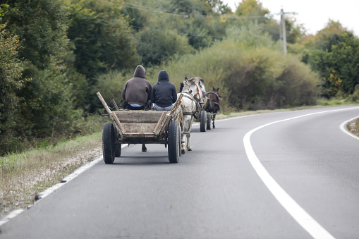 Roma people drive a horse drawn cart on a public road.