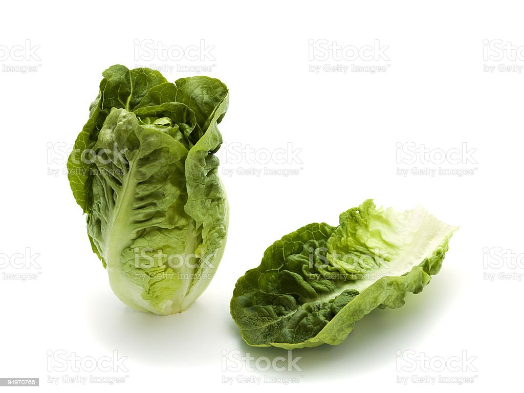 romaine lettuce and leaf stock photo