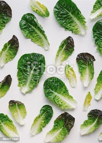 Romaine lettuce leaves on white background