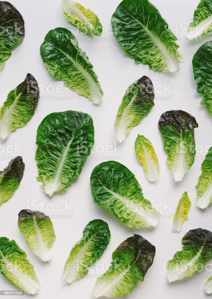 Romaine Salatblätter auf weißem Hintergrund – Foto
