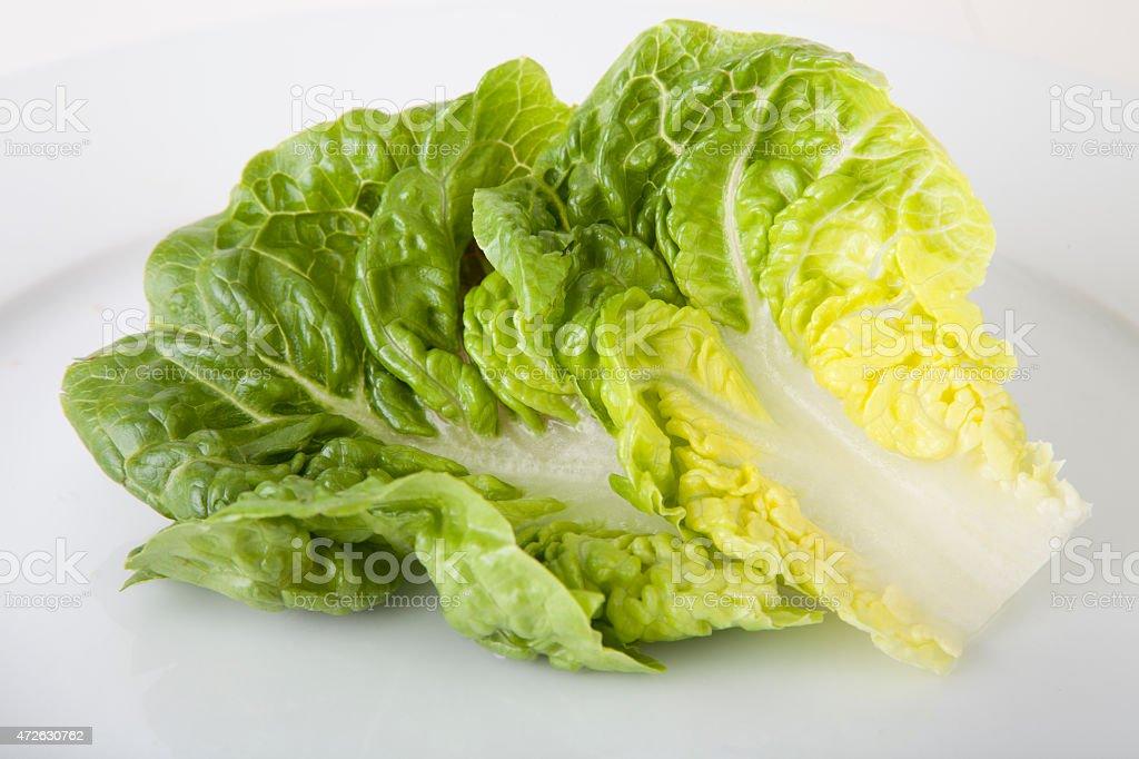 Romaine Lettuce on White Plate stock photo