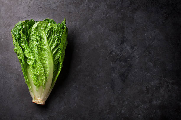 romaine lettuce salad - lettuce stock photos and pictures