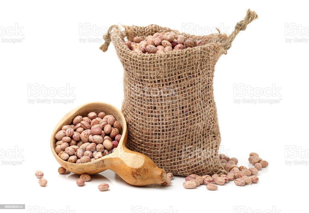 roman bean stock photo