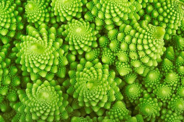 roman broccoli - fractal stockfoto's en -beelden