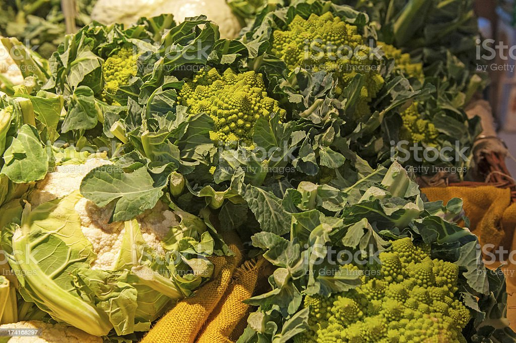 Roman cabbage royalty-free stock photo