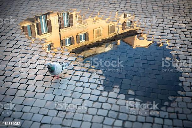 Roman cobblestone after rain, Rome Italy