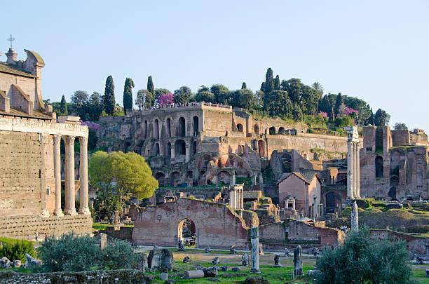 roman forum, palatine hill en fin d'après-midi - palais buccal photos et images de collection
