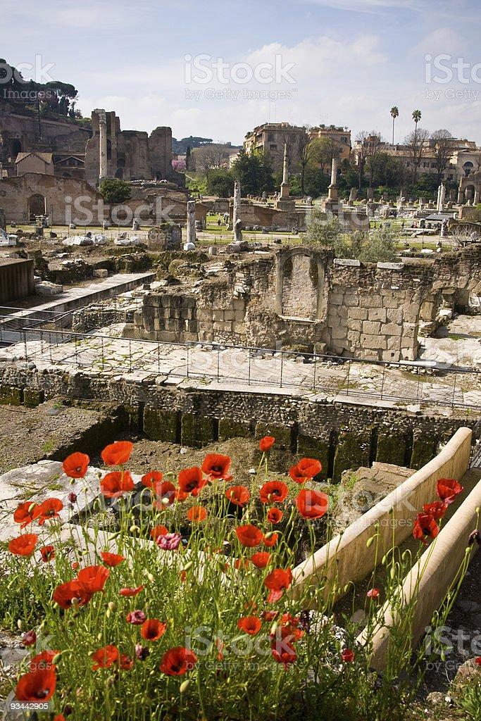 Roman Forum in Rom Lizenzfreies stock-foto