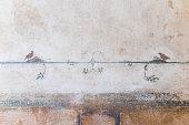 Parma - The ceiling freso of The Holy Trinity in church Chiesa di Santa Croce by Giovanni Maria Conti della Camera (1614 - 1670).