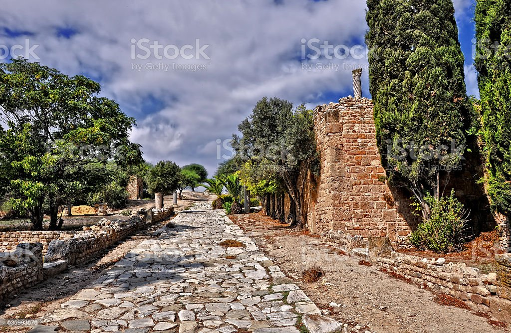 Roman Villas, Carthage. Tunisia, North Africa, Africa. stock photo