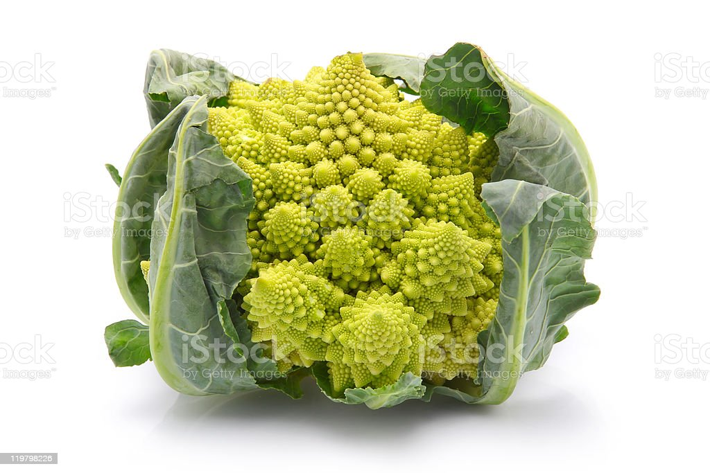Romanesco broccoli cabbage isolated royalty-free stock photo
