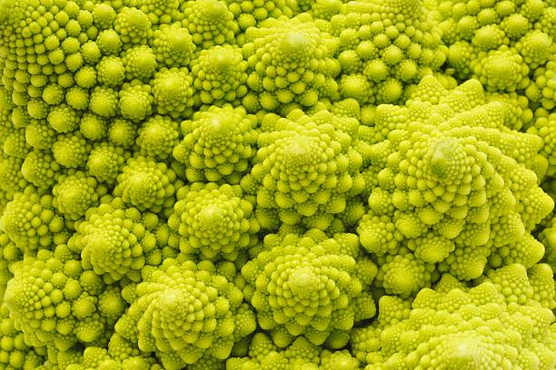 romanesco broccoli close-up - fractal stock photos and pictures