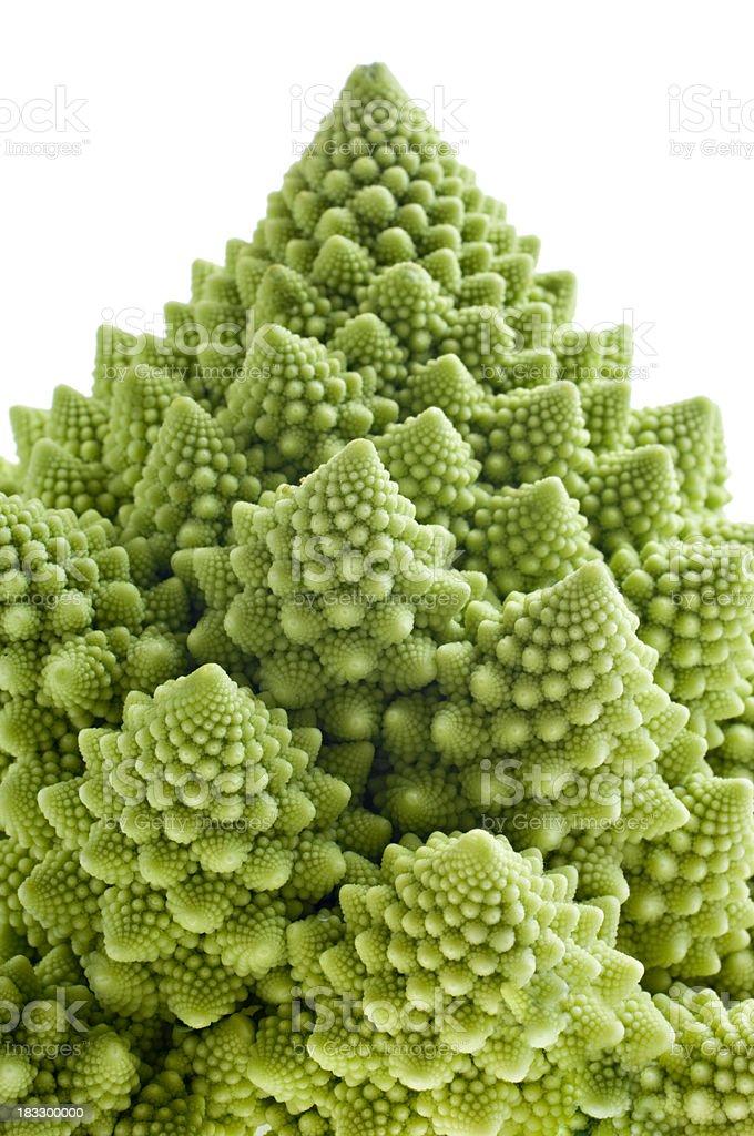 Romanesco Broccoli Isolated Against White. royalty-free stock photo
