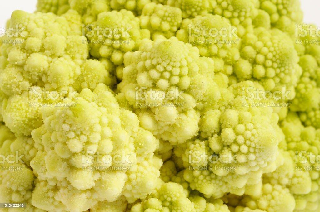 Romanesco Broccoli macro stock photo