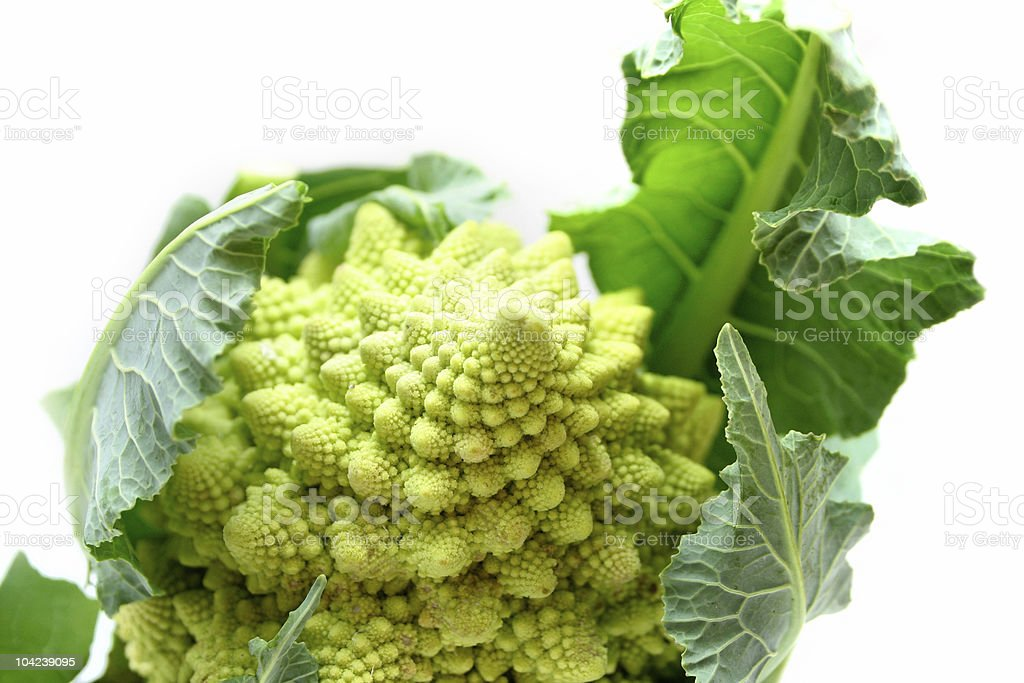 Romanesco Broccoli royalty-free stock photo