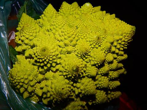 istock Romanesco Broccoli 1135039417