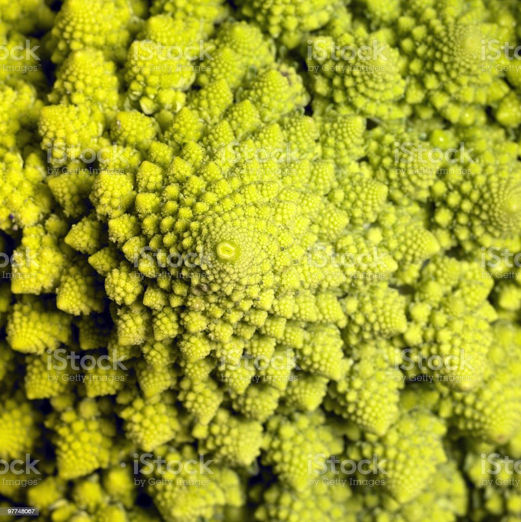 romanesco cauliflower background royalty-free stock photo