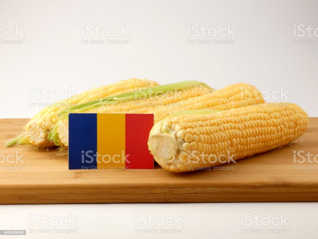 Romanian flag on a wooden panel with corn isolated on a white background stock photo