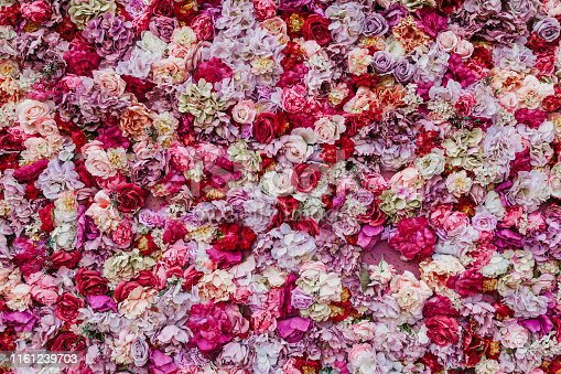 Floral abstract background. Beautiful rose buds of various colors and sizes are densely composed in a continuous layer