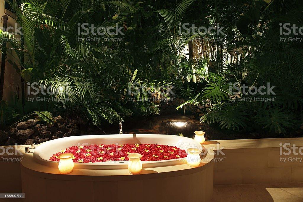 Salle De Bains Romantique Et Jardin Tropical (XXXL Photo Libre De Droits