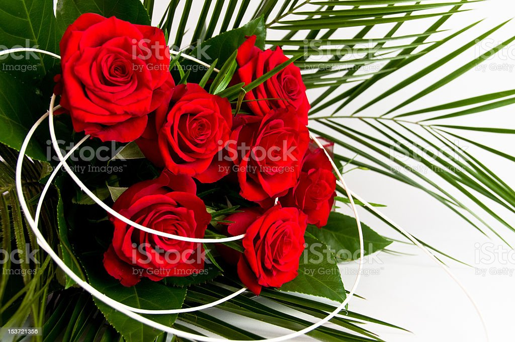 Romantic bouquet of seven red roses stock photo