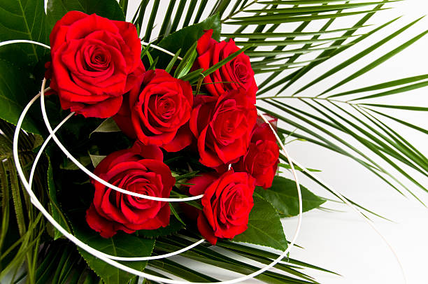 Romantic bouquet of seven red roses