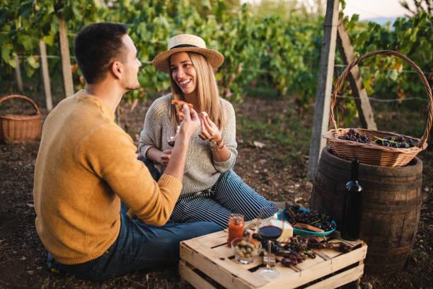 Romantic Brunch In Vineyard stock photo