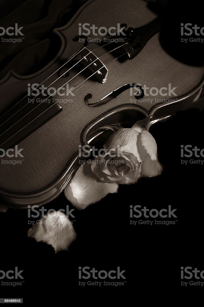 Romantic composition. royalty-free stock photo